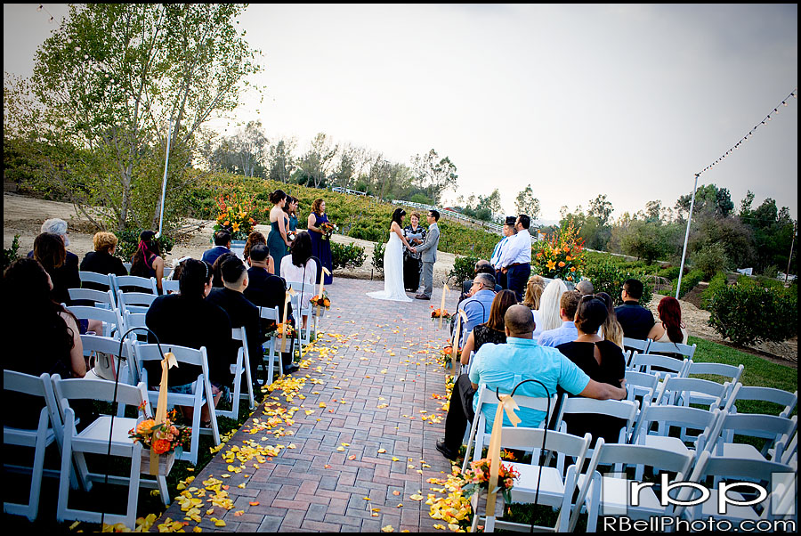 Temecula Wedding Photographer | Lorimar Vineyard Wedding Photographer